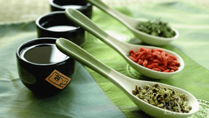 Chinese Ancient Pregnancy Nutrition